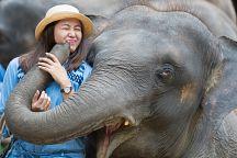 Таиланд отложил введение туристического налога